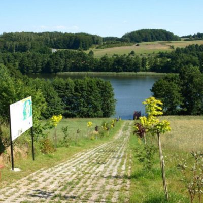 aleja spacerowa do jeziora patulskiego 1024x768 400x400 Trasa spacerowo widokowa wokół jeziora Patulskiego