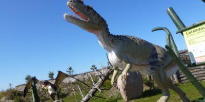 Znajduje się tam m.in.Park Dinozaurów czyWioska Indiańska Odległość: 85 km
