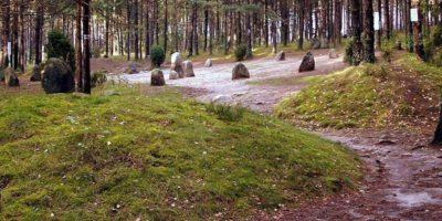 """przez niektórych nazywane """"polskim Stonehenge"""". Owiane licznymi legendami itajemnicami cmentarzysko, któregocharakterystycznymi elementami są wysokie płyty kamienne ułożone wkręgi. Co ciekawe, średnica największego wynosi około 16 m!   Odległość: 15 km"""
